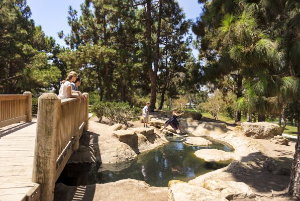 Fun and food for an active getaway in Costa Mesa